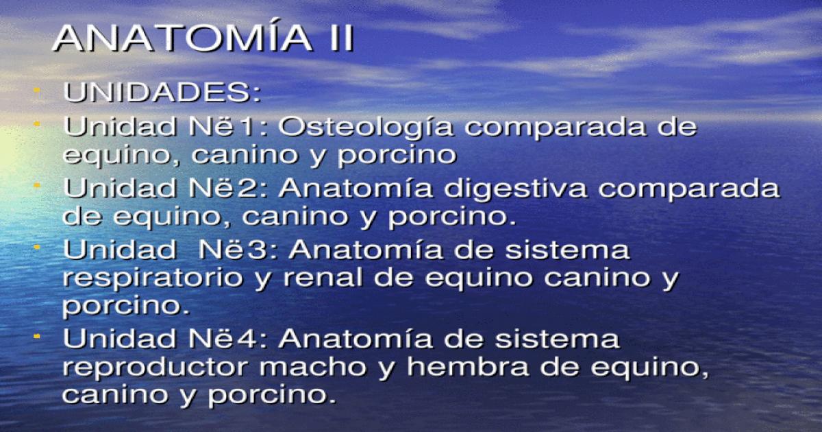 Fantástico Diagrama De La Anatomía Porcina Modelo - Anatomía de Las ...