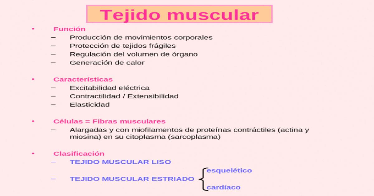 Tejido muscular Función –Producción de movimientos corporales ...
