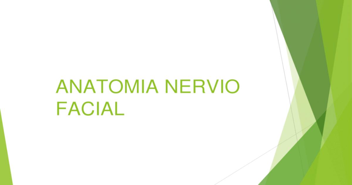 Anatomia nervio facial 2 - [PPT Powerpoint]