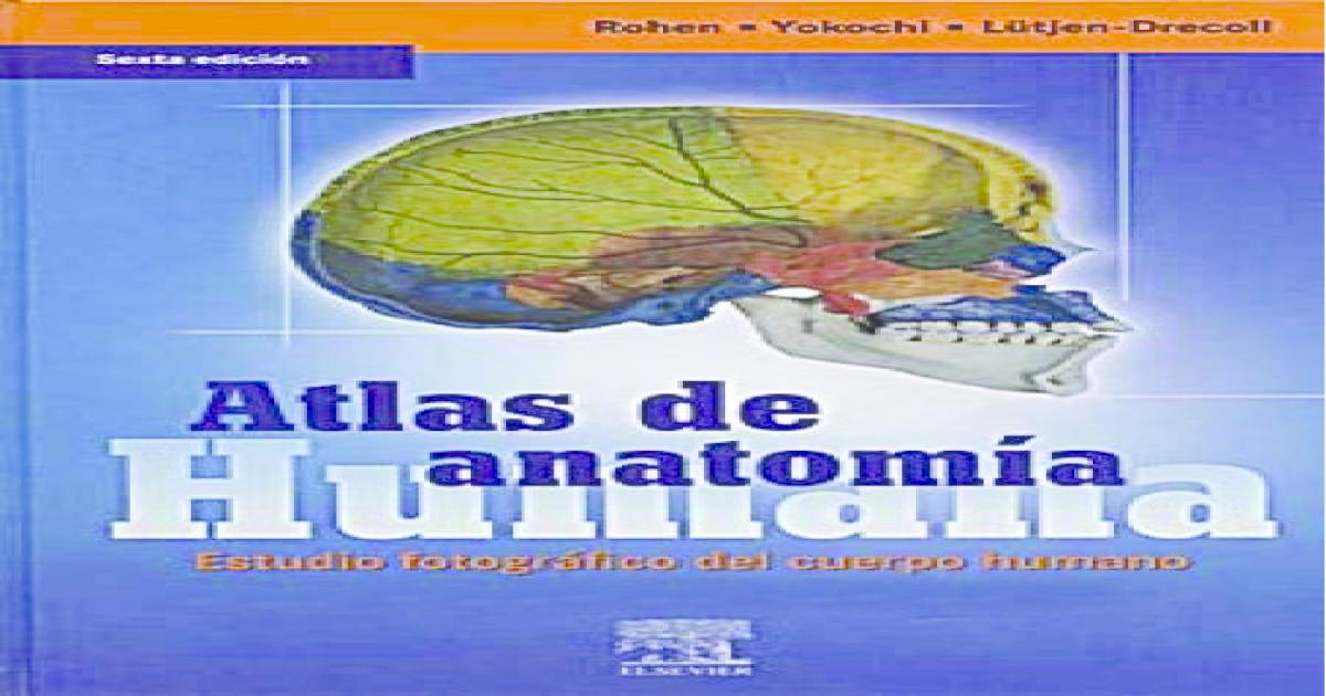 Atlas de Anatomía Humana - Rohen Yokochi - 6° Edición - [PDF Document]