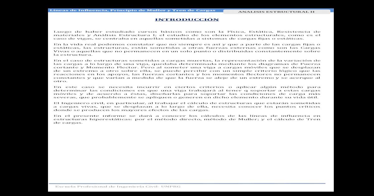Principio De Muller Pdf Document