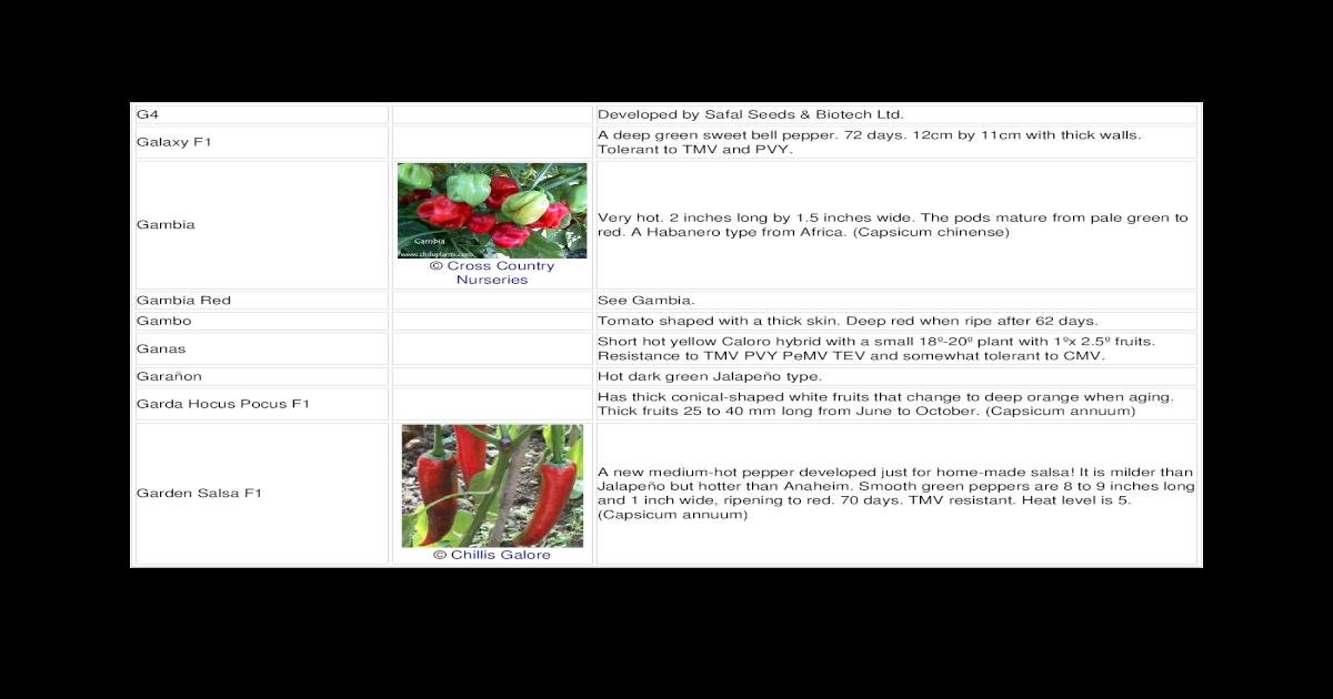 Chilli Varieties Doc Doent
