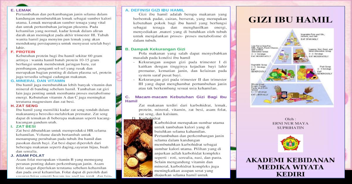 Leaflet Gizi Ibu Hamil Doc Document